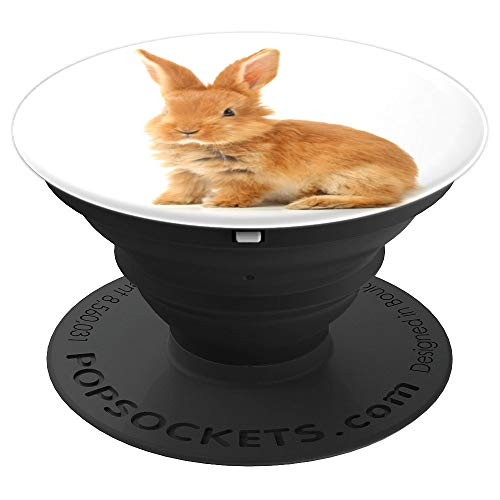 (Cute Tan Brown Fluffy Bunny Rabbit On White Background - PopSockets Grip and Stand for Phones and Tablets)