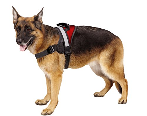 Big Dog Soft Reflective No Pull Red Harness size XL 36-46inch (Pitbull Red Harness compare prices)