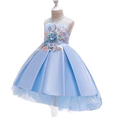 Baby Girls Infant Embroidery Dress Wedding Toddler High-end Dress Flower Dress,D0953-SkyBlue,7 -