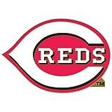MLB Cincinnati Reds 42700071 Collector Pin Jewelry Card