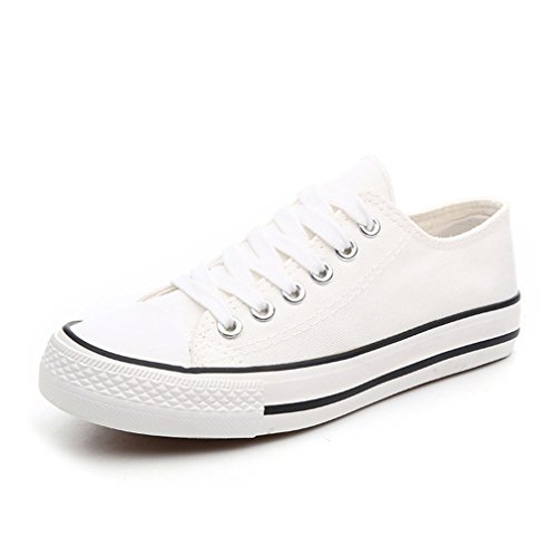 Women's Trainers Flat white2 Plimsoll Canvas Shoes Classic Lace Sneakers Up TTqp1gUw