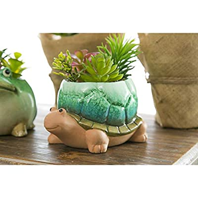 Cypress Home Ceramic Turtle Planter with Succulent - 6 x 5 x 4 Inches: Home & Kitchen