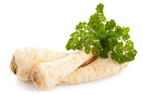 Parsley Root - Seeds Dutch Hamburg Parsley Root Sugar Herb Vegetable Organic Heirloom Russian Ukraine