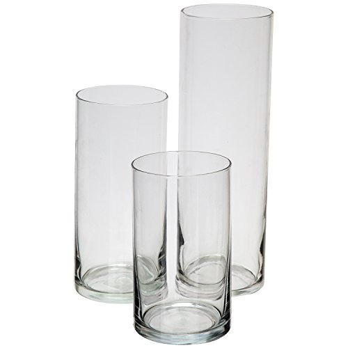 Glass Cylinder Vases SET OF 3 Decorative Centerpieces For Home or Wedding by Royal (Polyresin Column)