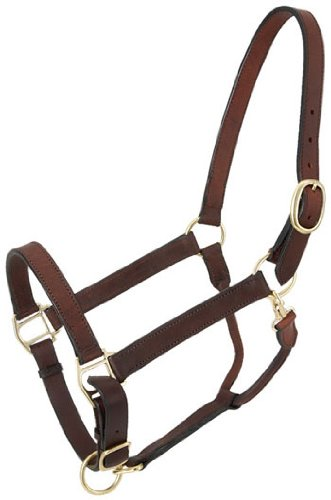 Tough-1 Leather Adj Stable Halter w/Snap Pony