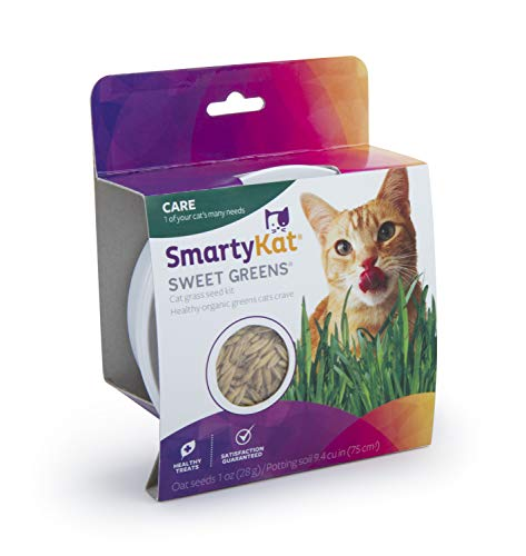 - Smartykat Sweet Greens Cat Grass Kit- 1 Oz