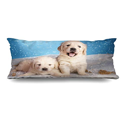 Ahawoso Body Pillows Cover 20x54 Inches Falling Labrador Two Golden Retriever Puppy On Cold Blue Christmas Litter Adorable Blizzard Decorative Cushion Case Home Decor Pillowcase ()