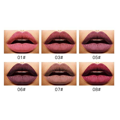 New Fashion Lipstick, Hunzed Women 6 Shades/Set Lip Lingerie Cosmetics Matte Lipstick Waterproof Lip Gloss Makeup (A)