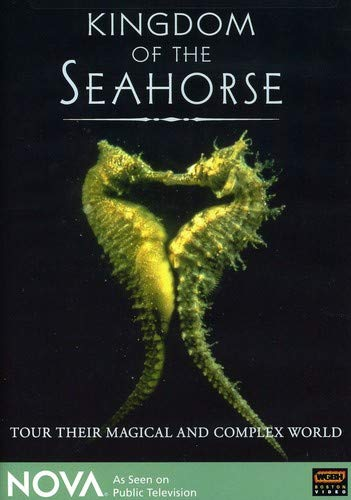 - NOVA - Kingdom of the Seahorse