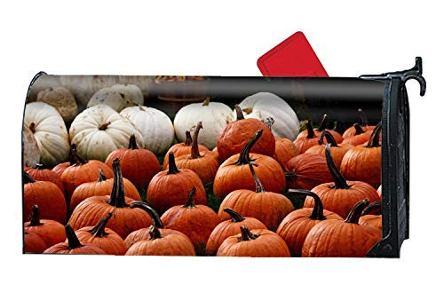 Tollyee Magnetic Mailbox Cover - Fall in Pumpkin, Welcome Home Magnetic Mailbox Cover 9