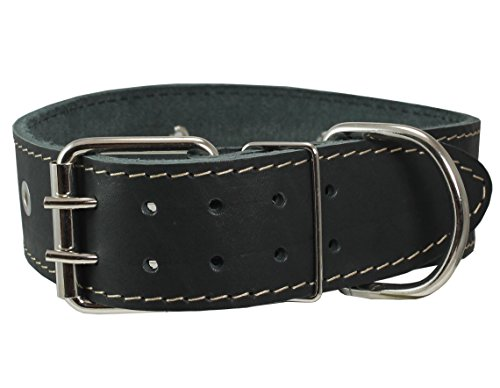 Black Genuine Leather Studded Dog Collar, 1.75