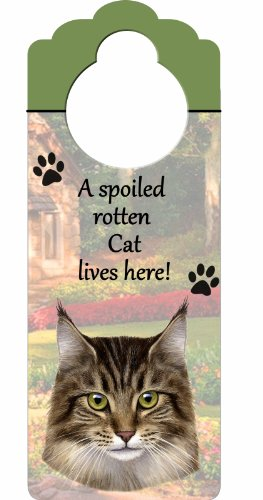 Maine Coon Cat Costume - Maine Coon Cat Wood Sign