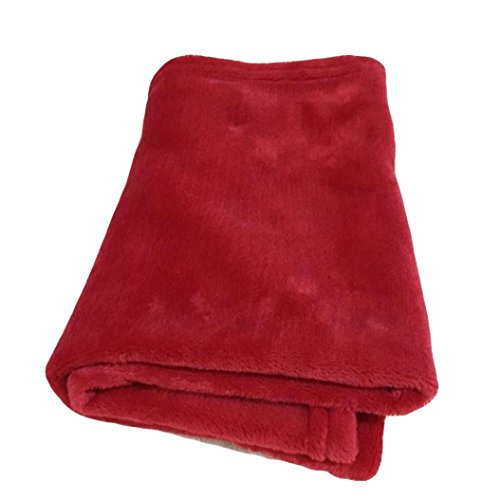 Auwer Small Blanket, Super Soft Fleece Throw Blanket Ultra Cozy Throw Light Weight Microfiber Blanket Couch/Sofa/Bedding/Travel/Camping Blanket 50x70cm (Red, 50x70cm)