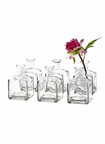 "Serene Spaces Living 6 Glass Bottle Bud Vases, Vintage Square Bottle Style – Elegant Vases, 4 3/8"" Tall by 2 5/8"" Square"