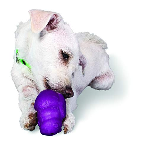 - PetSafe Busy Buddy Squirrel Dude, Durable Rubber Dog Chew Toy, Use with Food or Treats