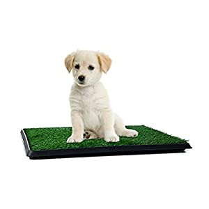 Pet grass mat patch by Vikings  Artificial grass material  Collection tray   for small dog potty training    pet toilet… Click on image for further info.