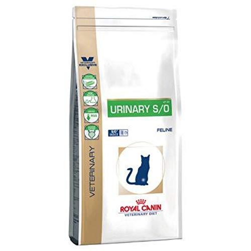 Royal Canin Urinary S/O – Comida para gatos, Veterinary Diet, 7 Kg