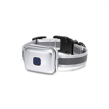 ZHENGDY Mascota Collar Mini Localizador GPS, Localizador Anti-Perdida Anti-Robo De Dispositivos para Perros Y Gatos,Small-Silver: Amazon.es: Hogar