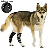 NeoAlly Dog Back Leg Braces [Pair] Canine Hind Hock Sleeves with Safety Reflective Straps for Joint Injury and Sprain Protection, Wound Healing and Loss of Stability from Arthritis (Black L Pair)