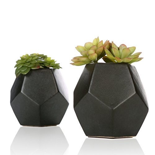 MyGift Set of 2 Realistic Artificial Succulent Plants in Matte Black Modern Geometric Ceramic Pots