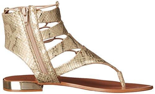 Aldo Women s Athena GLADIATOR Sandal