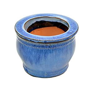 5en violeta africana Auto-Regado redonda (Azul lavanda
