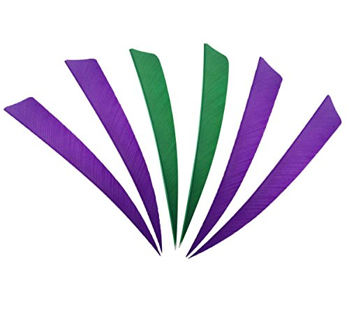 Obert Archery 60pcs Arrow Feathers 4 inch Hunting Arrows Fletching Right Wing Green Purple Shield Cut ()