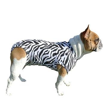 Baseball & Softball Medical Pet Shirt Hund Ze l Zebradruck