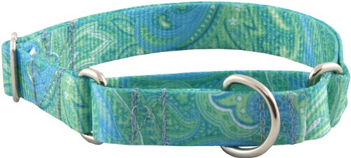 Patterned Martingale Dog Collar-Green Paisley-L, My Pet Supplies