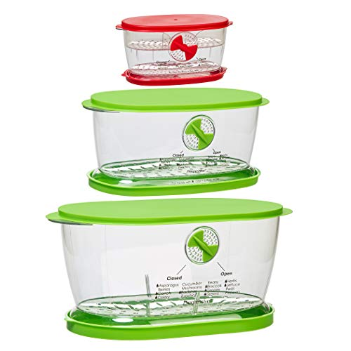 Prepworks by Progressive 4.7 Quart Lettuce Keeper, 1.9 Quart Fruit and Vegetable Keeper and 2 Cup Berry Keeper 3 Piece Set ()