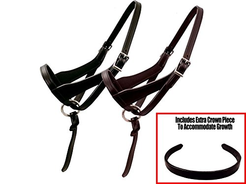 (Derby Originals Paris Tack Double Layered Leather Grow with Me Adjustable Horse Foal Halter with Extra Crown)