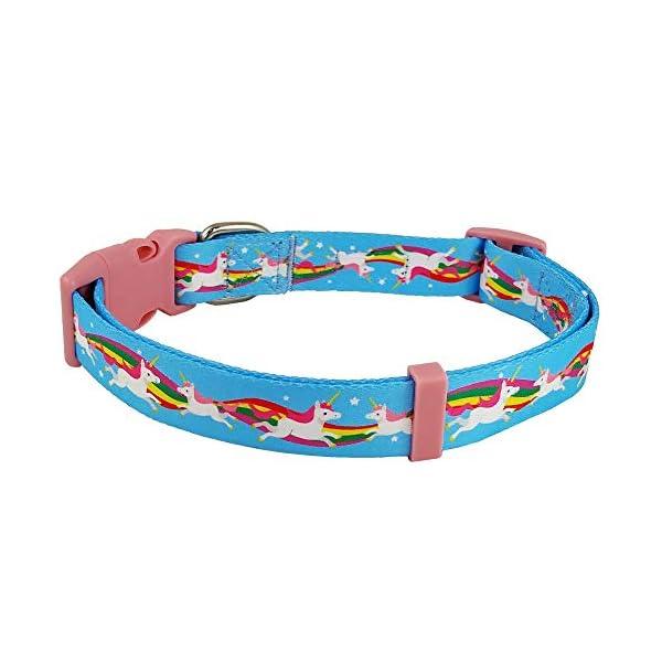 Bestbuddy Pet Unicorns and Rainbows Blue Fairytale Durable Nylon Designer Fashion Dog Collar Trendy Comfortable… 4