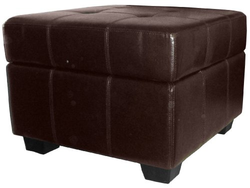 Epic Furnishings Vanderbilt 24-Inch Square Tufted Padded Hinged Storage Ottoman Bench, Leather Look Brown