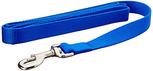 (Coastal Pet Products DCP906BLU Nylon Single Layer Dog Leash, 1-Inch by 6-Feet, Blue )