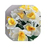 2Pcs-Artificial-Narcissus-Simulation-Daffodils-Seven-Stems-Per-Bush-WhiteYellow-for-Wedding-Party-Home-D