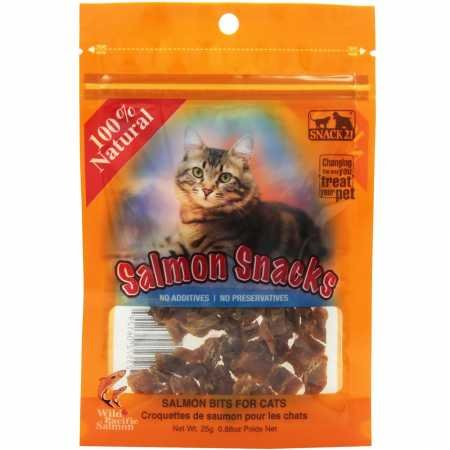 (Snack 21 Salmon Snacks For)