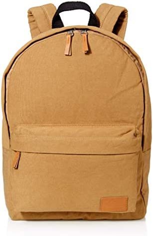 Quiksilver Mens Everyday Poster Canvas 25L