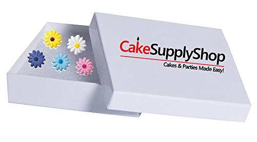 Novelty Cake Decoration Gift Box Wobbly Legs Santa Wine Saver Bottle Stopper