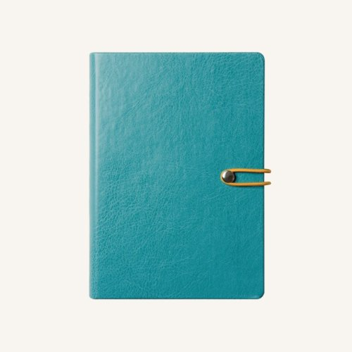 - 2019 Office Executive Daily Business Diary, Leather Case Bound Organizer Calendar by Daycraft Signature - A5 Size, Blue (D881B)