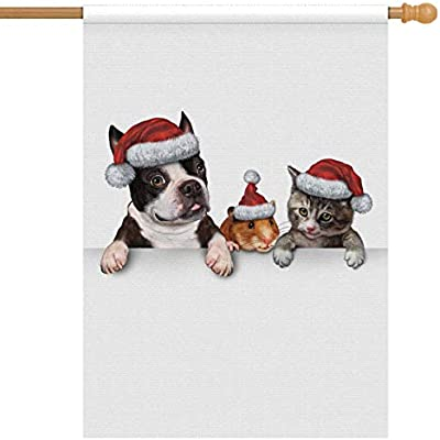Amazon Com Interestprint Cute Christmas Pets Dog Hamster And Cat In Santa Claus Hat Decorative Flag House Flag House Banner For Wishing Party Wedding Yard Home Decor 28 X 40 Without Flagpole