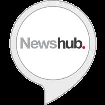 Newshub Flash Briefing