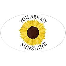 CafePress - You Are My Sunshine Sticker - Oval Bumper Sticker, Euro Oval Car Decal