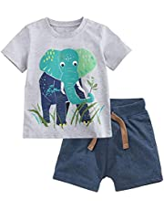 Fiream Boy's Cotton Clothing Sets T-Shirt&Shorts 2 Packs(SY066,12-18 Months)