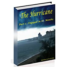 The Hurricane: Part 2 of Engaged in 10 Months