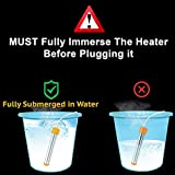CalPalmy Immersion Heater | Submersible Water