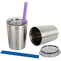 Housavvy Stainless Steel Sippy Cup with Lid and Straw 8.5 OZ Set of 2