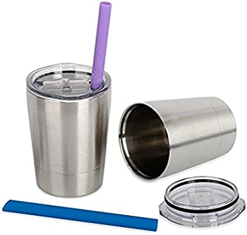Housavvy Stainless Steel Sippy Cup with Lid and Straw Set of 2