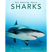 Sharks: Amazing Pictures & Fun Facts on Animals in Nature
