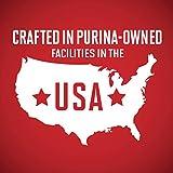 Purina ONE Natural, High Protein Gravy Wet Dog