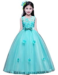 12ac131a6c1 Princess Party Wedding Flower Tulle Lace Dress Embroidered Dresses for Girls  Baby
